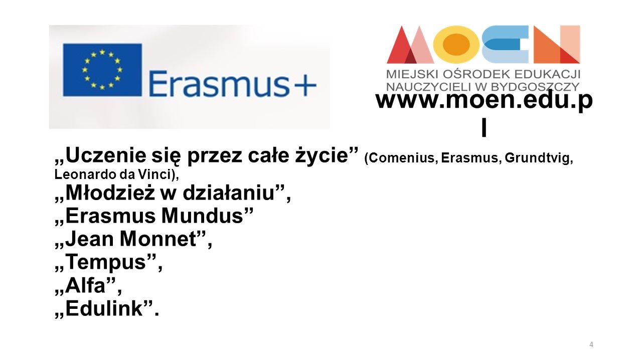 Uczenie się przez całe życie (Comenius, Erasmus, Grundtvig, Leonardo da Vinci), Młodzież w działaniu, Erasmus Mundus Jean Monnet, Tempus, Alfa, Edulin
