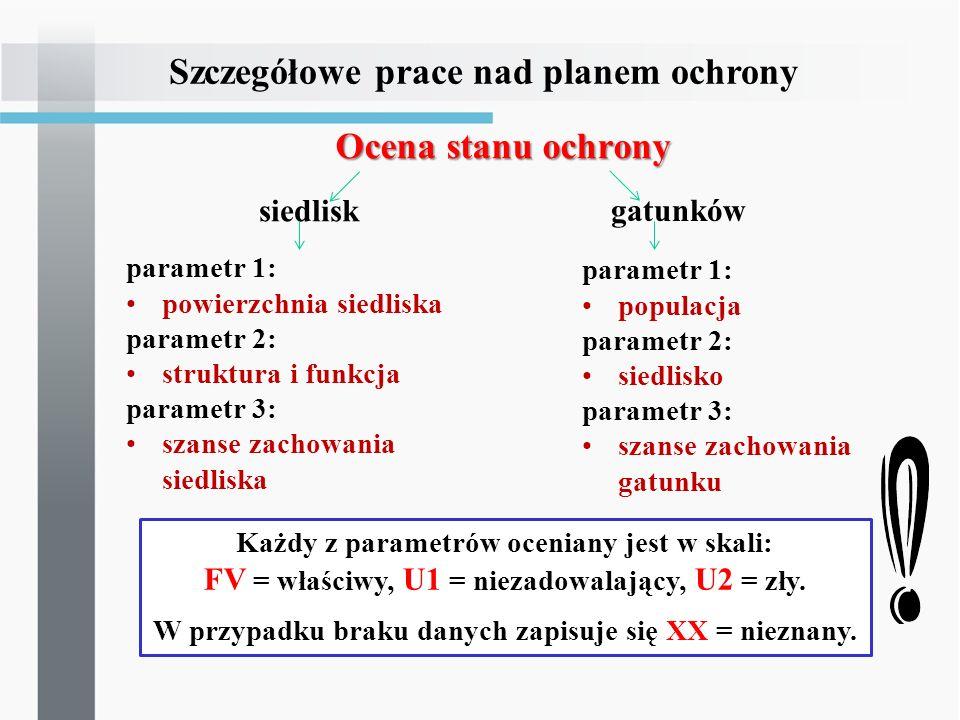 Ocena stanu ochrony parametr 1: powierzchnia siedliska parametr 2: struktura i funkcja parametr 3: szanse zachowania siedliska Szczegółowe prace nad p