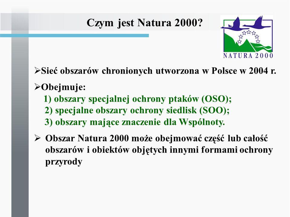 Czym jest Natura 2000? Sieć obszarów chronionych utworzona w Polsce w 2004 r. Obejmuje: 1) obszary specjalnej ochrony ptaków (OSO); 2) specjalne obsza