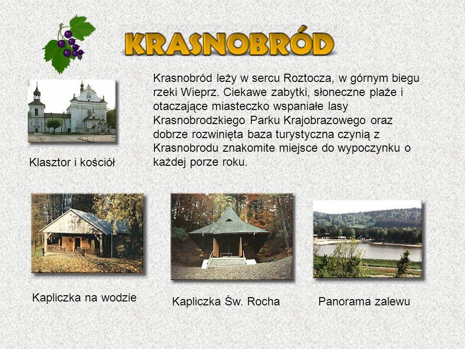 Panorama zalewu Kapliczka na wodzie Kapliczka Św.