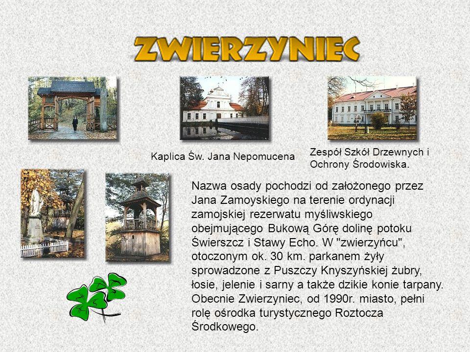 Nazwa osady pochodzi od założonego przez Jana Zamoyskiego na terenie ordynacji zamojskiej rezerwatu myśliwskiego obejmującego Bukową Górę dolinę potoku Świerszcz i Stawy Echo.