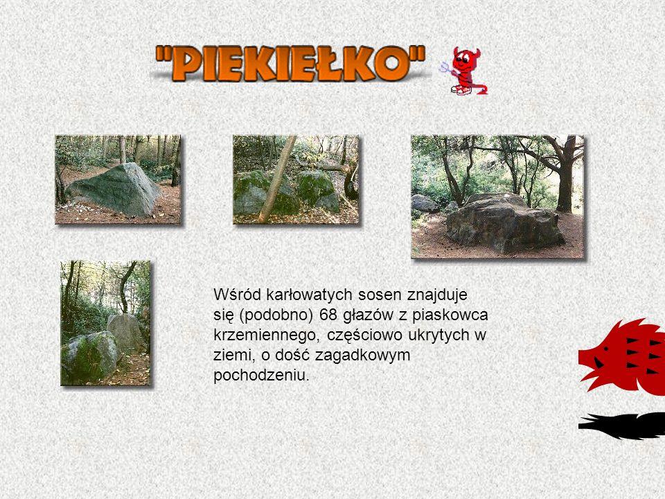 Wśród karłowatych sosen znajduje się (podobno) 68 głazów z piaskowca krzemiennego, częściowo ukrytych w ziemi, o dość zagadkowym pochodzeniu.