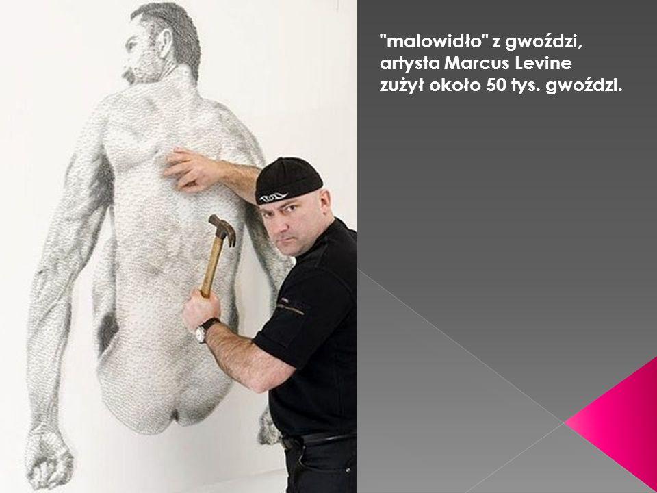 malowidło z gwoździ, artysta Marcus Levine zużył około 50 tys. gwoździ.