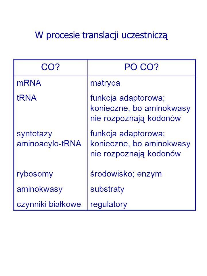 CO?PO CO? mRNA tRNA syntetazy aminoacylo-tRNA rybosomy aminokwasy czynniki białkowe matryca funkcja adaptorowa; konieczne, bo aminokwasy nie rozpoznaj