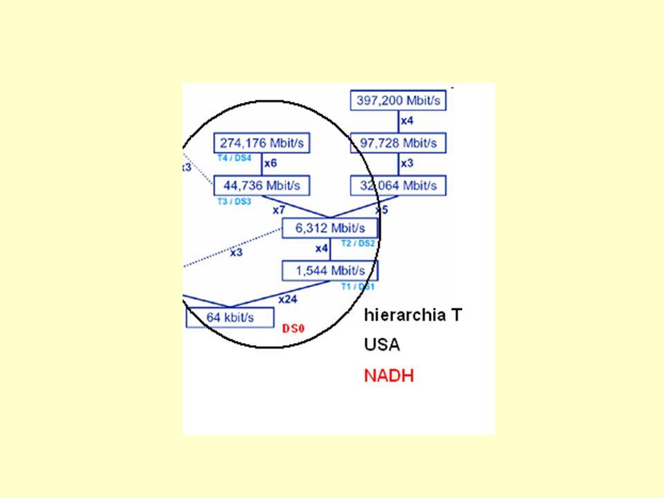 T-1 dół hierarchii Specjalne łącze (synchroniczne) zapewniające transmisję w granicach ok.