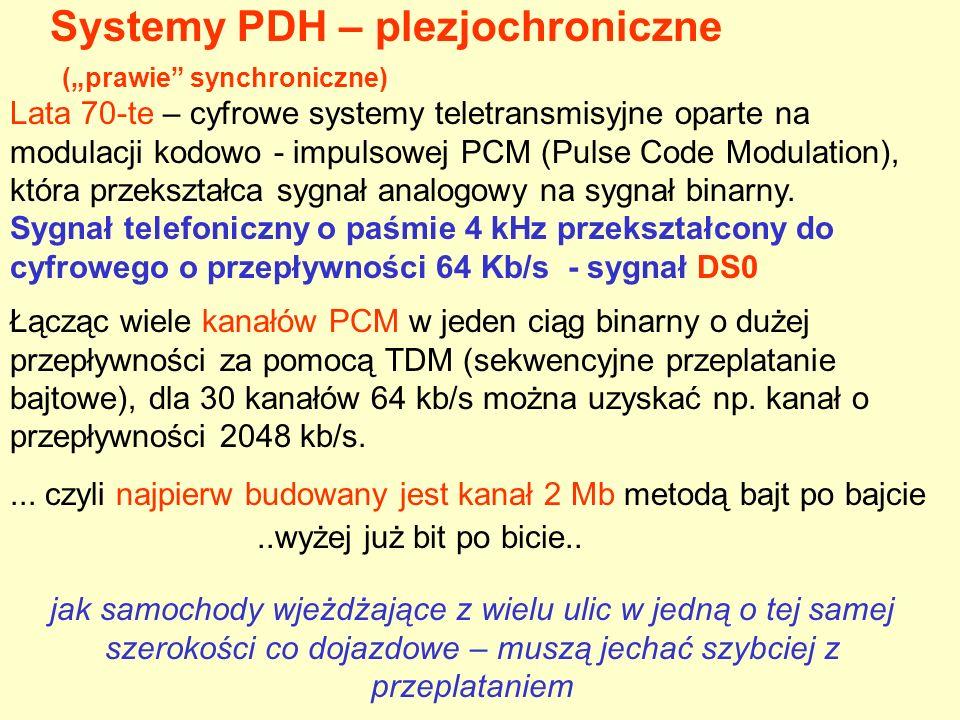 Hierarchia plezjochroniczna - PDH Europa USA E T