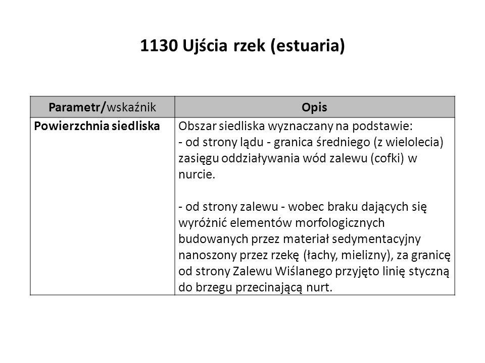 1130 Ujścia rzek (estuaria) Parametr/wskaźnikOpis Powierzchnia siedliskaObszar siedliska wyznaczany na podstawie: - od strony lądu - granica średniego (z wielolecia) zasięgu oddziaływania wód zalewu (cofki) w nurcie.