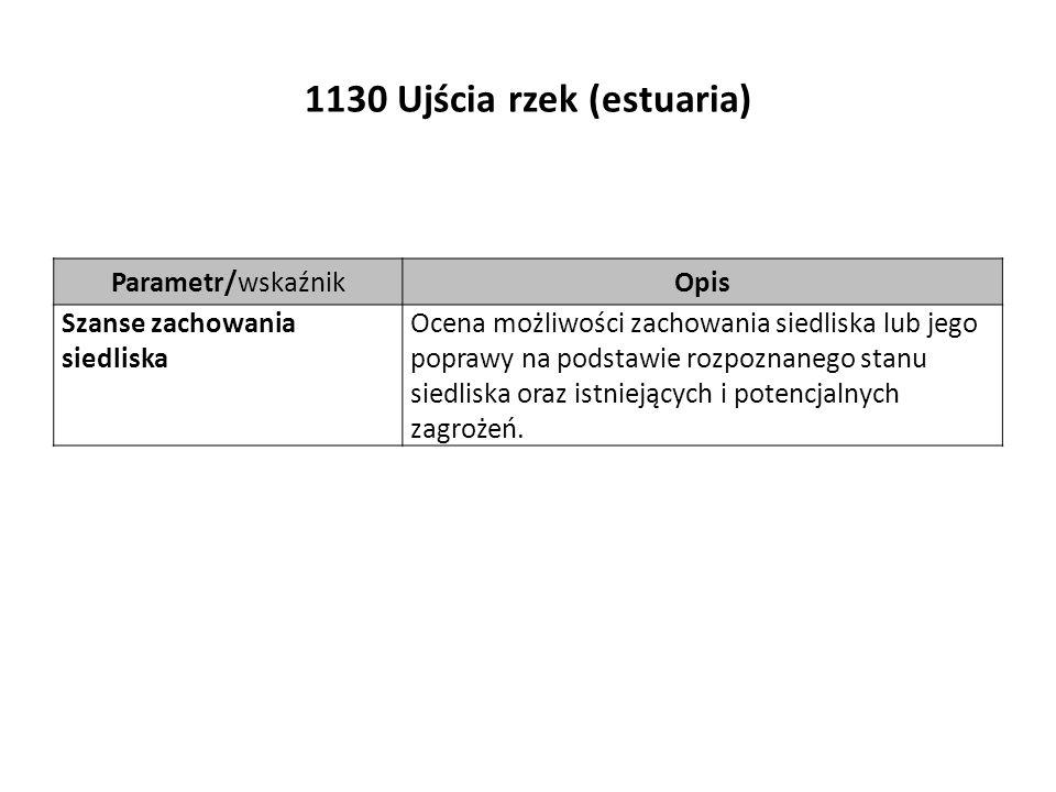 1130 Ujścia rzek (estuaria) Parametr/wskaźnikOpis Szanse zachowania siedliska Ocena możliwości zachowania siedliska lub jego poprawy na podstawie rozpoznanego stanu siedliska oraz istniejących i potencjalnych zagrożeń.