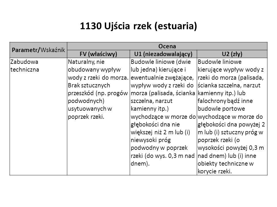 1130 Ujścia rzek (estuaria) Parametr/Wskaźnik Ocena FV (właściwy)U1 (niezadowalający)U2 (zły) Zabudowa techniczna Naturalny, nie obudowany wypływ wody z rzeki do morza.