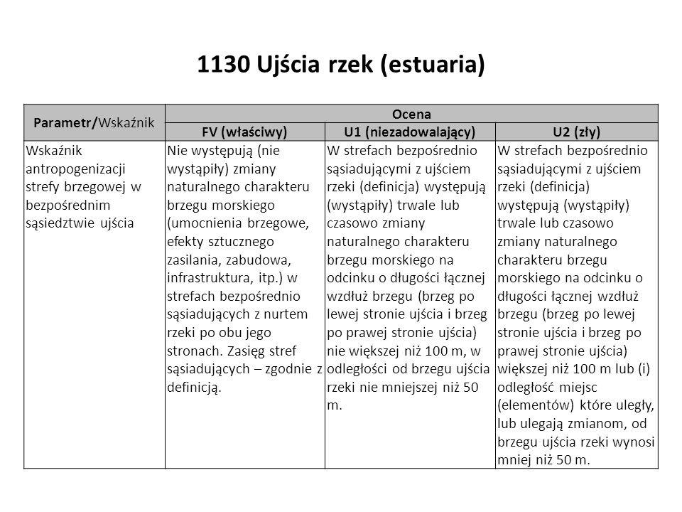 1130 Ujścia rzek (estuaria) Parametr/Wskaźnik Ocena FV (właściwy)U1 (niezadowalający)U2 (zły) Wskaźnik antropogenizacji strefy brzegowej w bezpośrednim sąsiedztwie ujścia Nie występują (nie wystąpiły) zmiany naturalnego charakteru brzegu morskiego (umocnienia brzegowe, efekty sztucznego zasilania, zabudowa, infrastruktura, itp.) w strefach bezpośrednio sąsiadujących z nurtem rzeki po obu jego stronach.