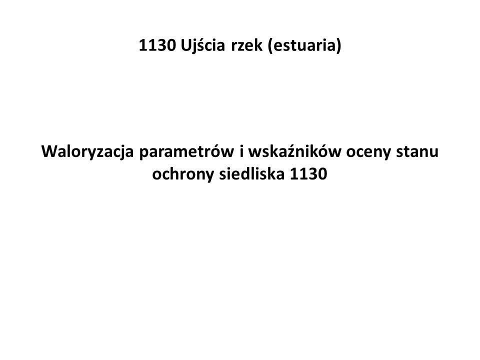 1130 Ujścia rzek (estuaria) Waloryzacja parametrów i wskaźników oceny stanu ochrony siedliska 1130