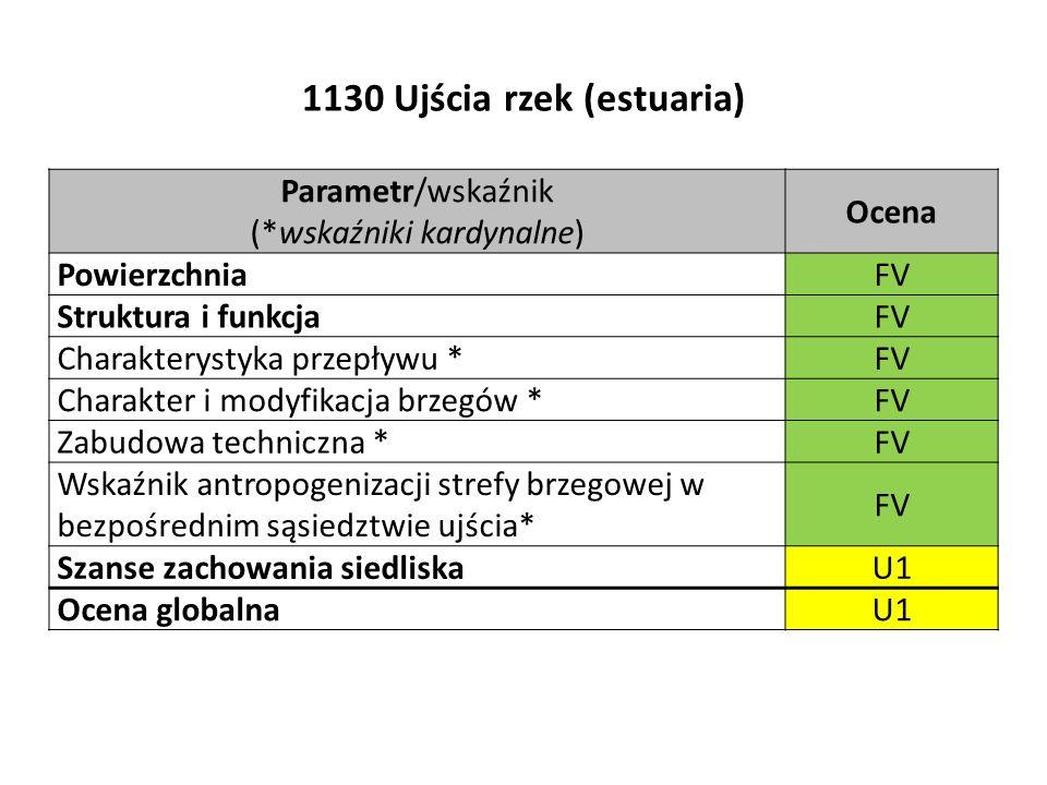 1130 Ujścia rzek (estuaria) Parametr/wskaźnik (*wskaźniki kardynalne) Ocena PowierzchniaFV Struktura i funkcjaFV Charakterystyka przepływu *FV Charakter i modyfikacja brzegów *FV Zabudowa techniczna *FV Wskaźnik antropogenizacji strefy brzegowej w bezpośrednim sąsiedztwie ujścia* FV Szanse zachowania siedliskaU1 Ocena globalnaU1