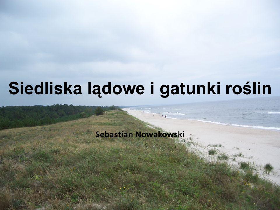 Siedliska lądowe i gatunki roślin Sebastian Nowakowski