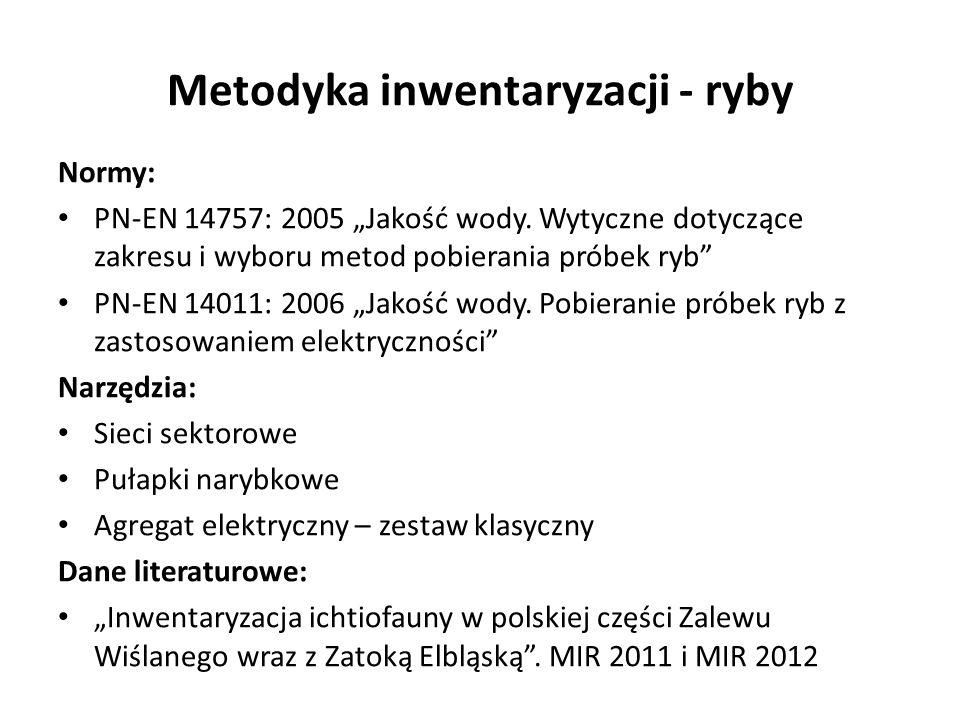 Metodyka inwentaryzacji - ryby Normy: PN-EN 14757: 2005 Jakość wody. Wytyczne dotyczące zakresu i wyboru metod pobierania próbek ryb PN-EN 14011: 2006