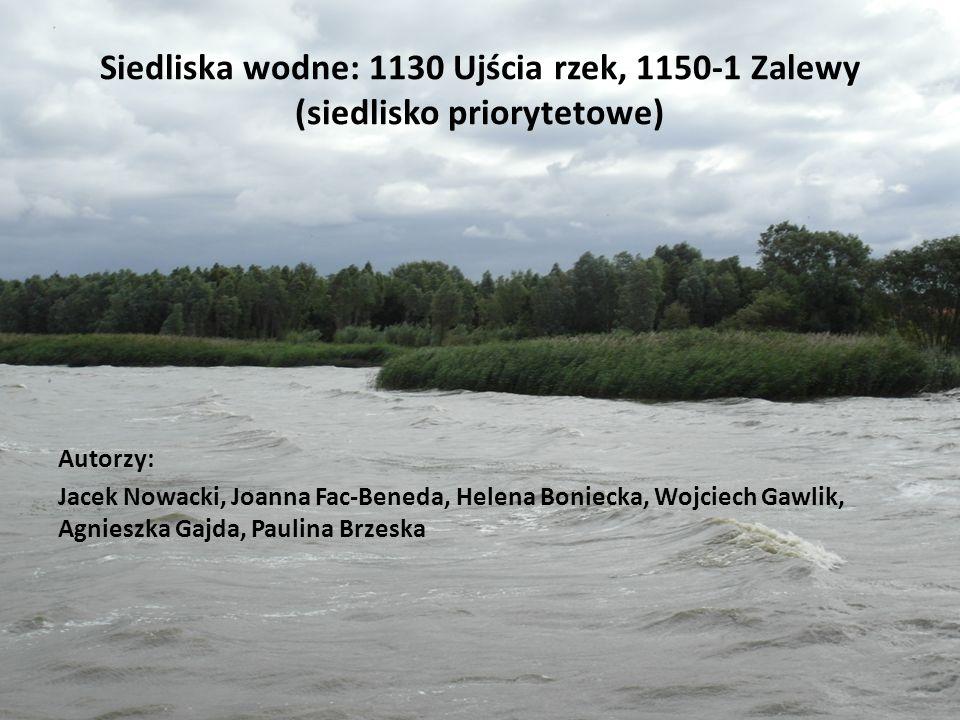 Siedliska wodne: 1130 Ujścia rzek, 1150-1 Zalewy (siedlisko priorytetowe) Autorzy: Jacek Nowacki, Joanna Fac-Beneda, Helena Boniecka, Wojciech Gawlik, Agnieszka Gajda, Paulina Brzeska