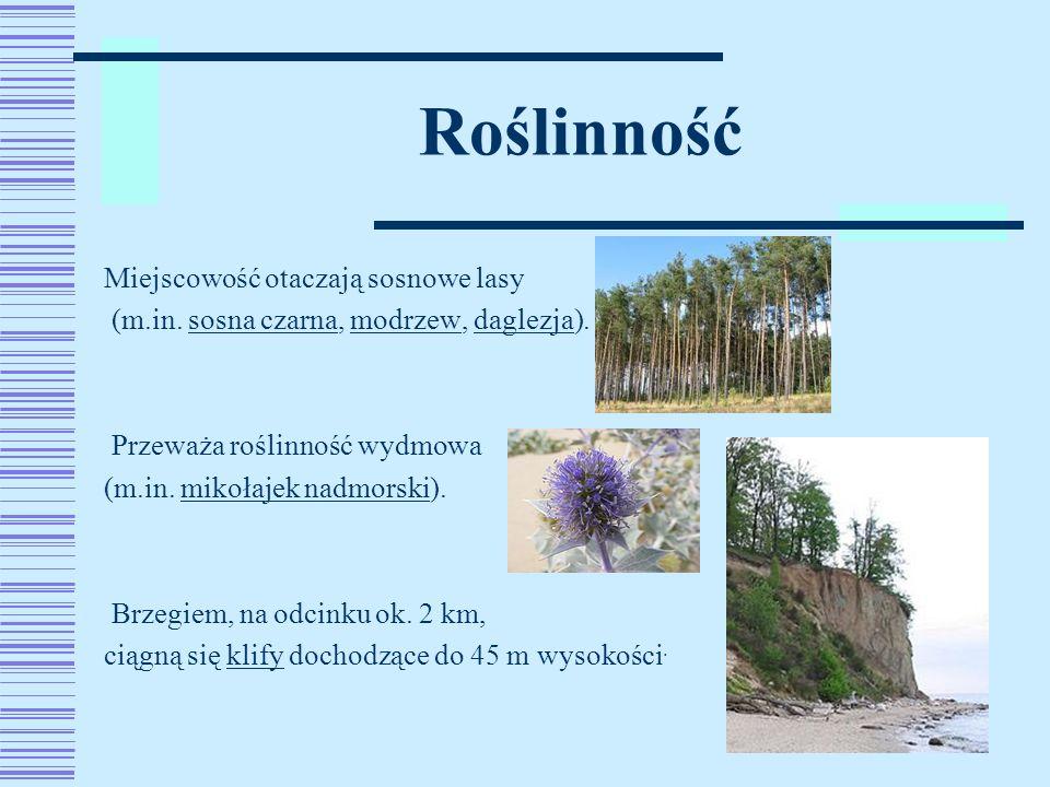 Latarnia Czołpino Wieża wznosi się na wysokiej wydmie na tereniewydmie Słowińskiego Parku NarodowegoSłowińskiego Parku Narodowego.