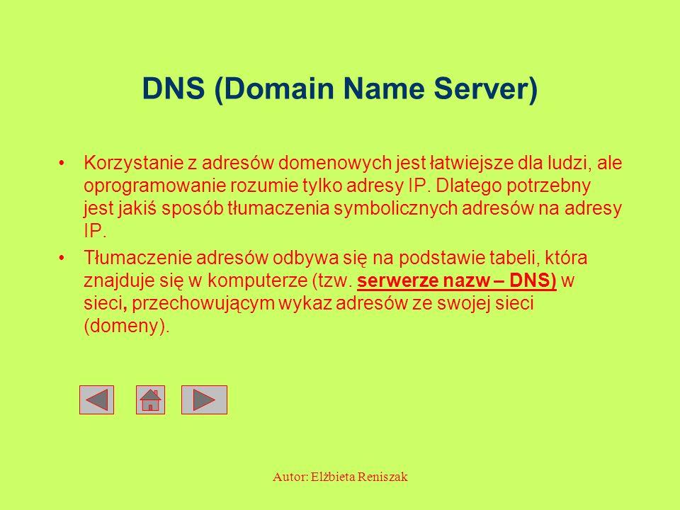 Autor: Elżbieta Reniszak DNS (Domain Name Server) Korzystanie z adresów domenowych jest łatwiejsze dla ludzi, ale oprogramowanie rozumie tylko adresy