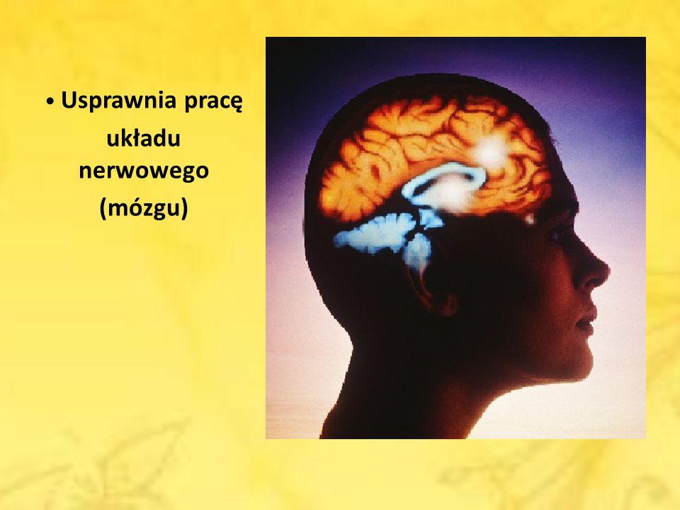 Usprawnia pracę układu nerwowego (mózgu)