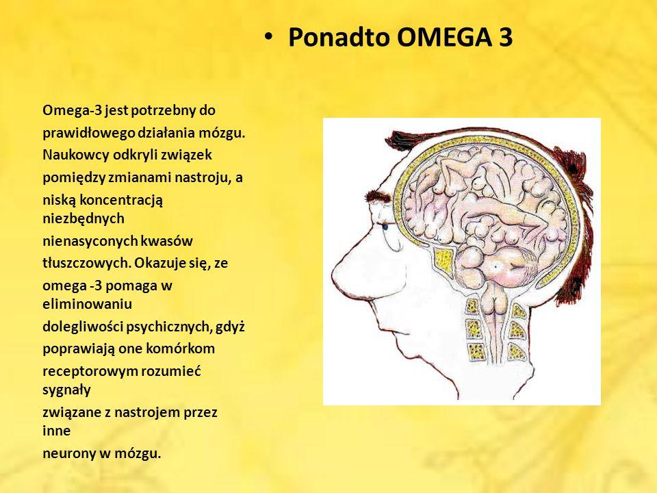 Ponadto OMEGA 3 Omega-3 jest potrzebny do prawidłowego działania mózgu. Naukowcy odkryli związek pomiędzy zmianami nastroju, a niską koncentracją niez