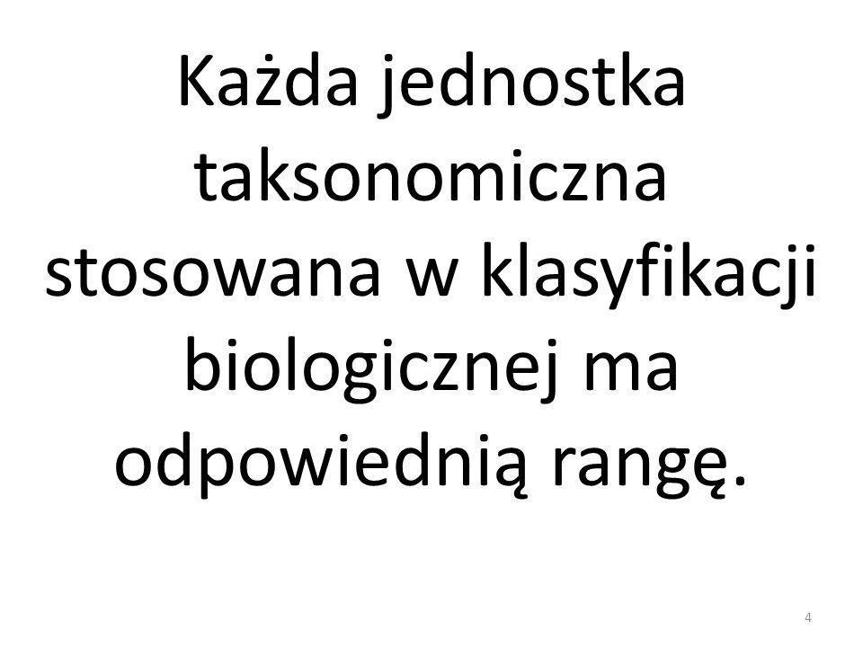 Każda jednostka taksonomiczna stosowana w klasyfikacji biologicznej ma odpowiednią rangę. 4