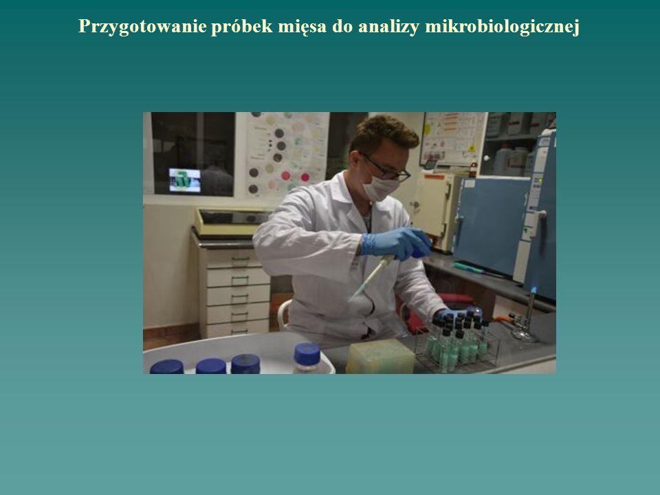 Przygotowanie próbek mięsa do analizy mikrobiologicznej