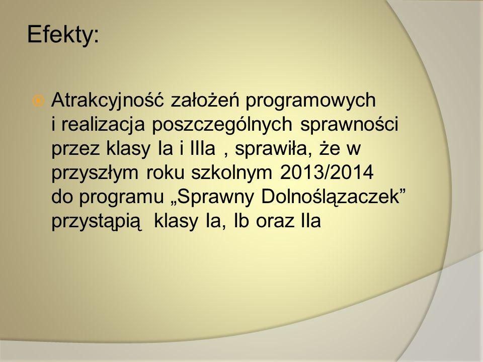 Efekty: Atrakcyjność założeń programowych i realizacja poszczególnych sprawności przez klasy Ia i IIIa, sprawiła, że w przyszłym roku szkolnym 2013/20
