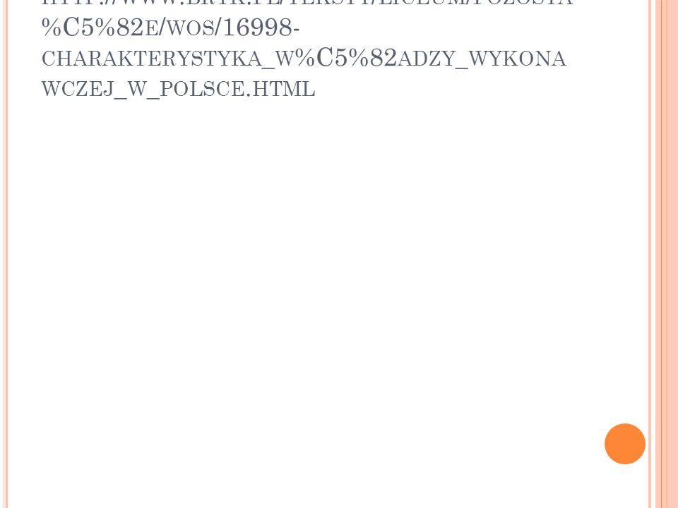 HTTP :// WWW. BRYK. PL / TEKSTY / LICEUM / POZOSTA %C5%82 E / WOS /16998- CHARAKTERYSTYKA _ W %C5%82 ADZY _ WYKONA WCZEJ _ W _ POLSCE. HTML