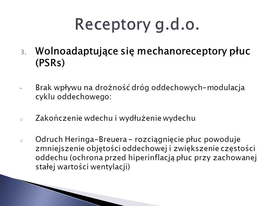 3. Wolnoadaptujące się mechanoreceptory płuc (PSRs) Brak wpływu na drożność dróg oddechowych-modulacja cyklu oddechowego: o Zakończenie wdechu i wydłu