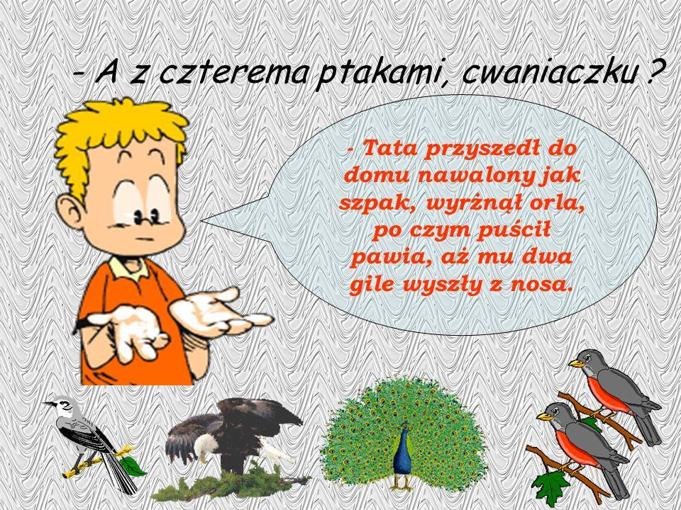 - A z czterema ptakami, cwaniaczku ? - Tata przyszedł do domu nawalony jak szpak, wyrżnął orla, po czym puścił pawia, aż mu dwa gile wyszły z nosa.
