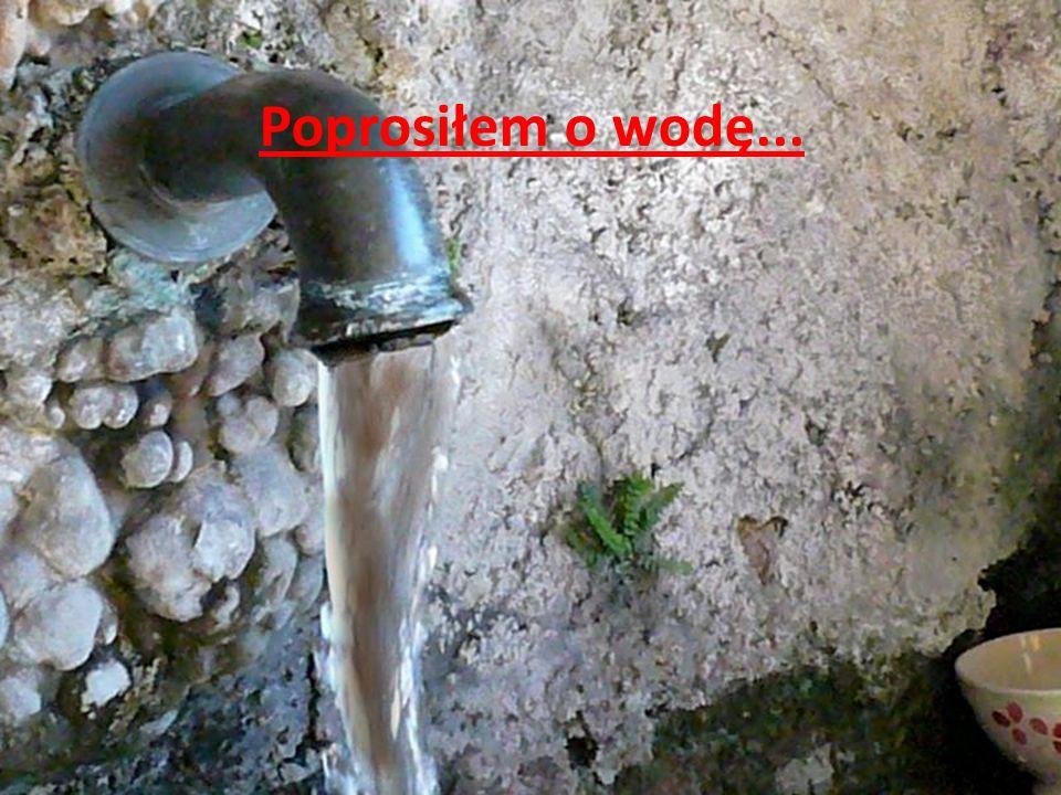 Poprosiłem o wodę...