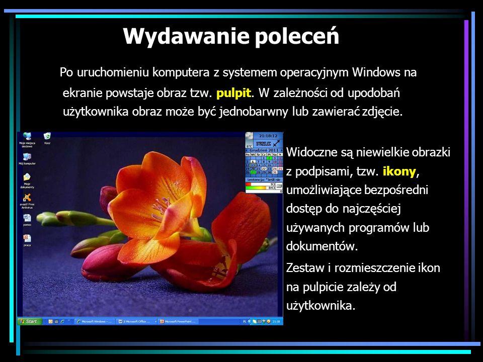 Po uruchomieniu komputera z systemem operacyjnym Windows na ekranie powstaje obraz tzw. pulpit. W zależności od upodobań użytkownika obraz może być je
