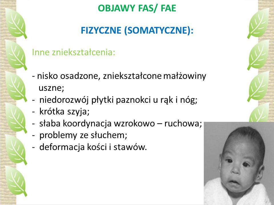 OBJAWY FAS/ FAE FIZYCZNE (SOMATYCZNE): Inne zniekształcenia: - nisko osadzone, zniekształcone małżowiny uszne; - niedorozwój płytki paznokci u rąk i n