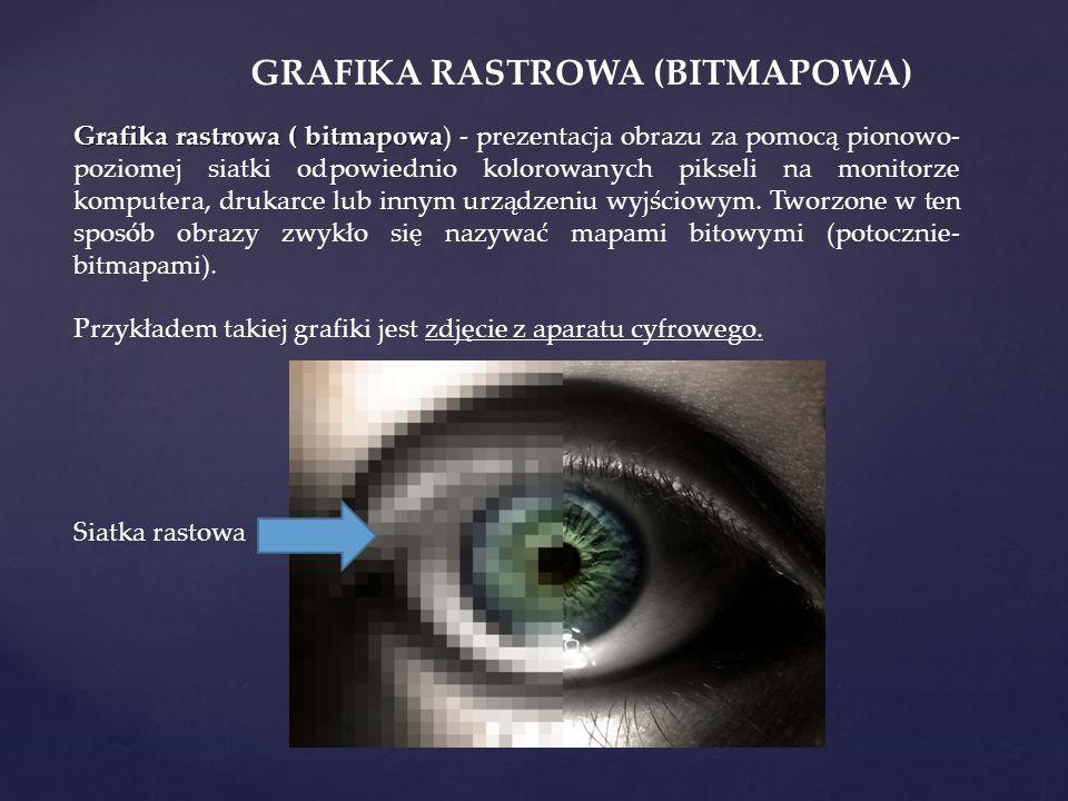 Grafika rastrowa ( bitmapowa Grafika rastrowa ( bitmapowa) - prezentacja obrazu za pomocą pionowo- poziomej siatki odpowiednio kolorowanych pikseli na