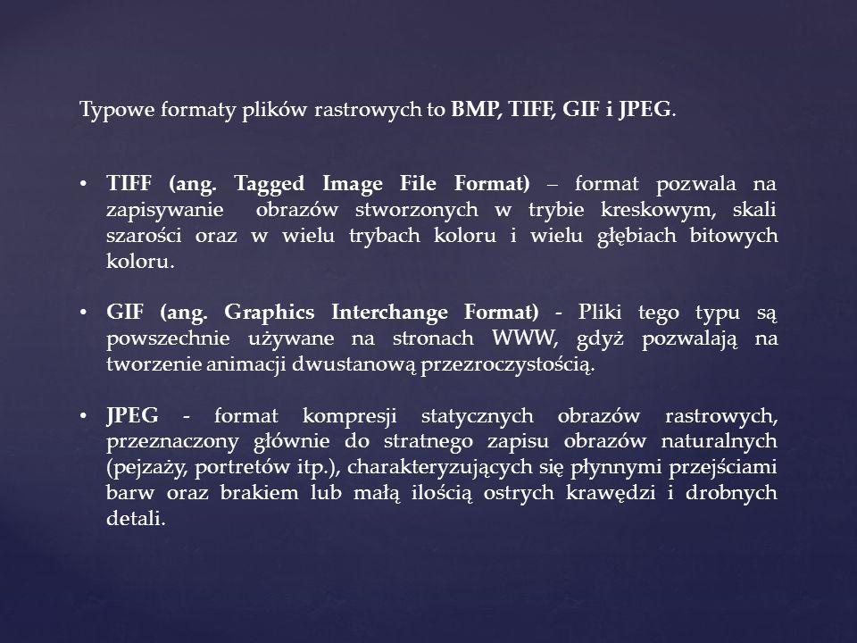 Typowe formaty plików rastrowych to BMP, TIFF, GIF i JPEG. TIFF (ang. Tagged Image File Format) – format pozwala na zapisywanie obrazów stworzonych w