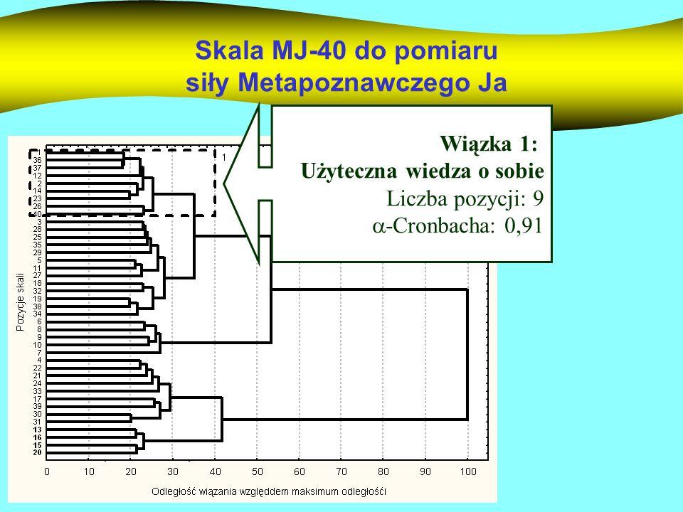 Przykładowe pozycje skali 1.