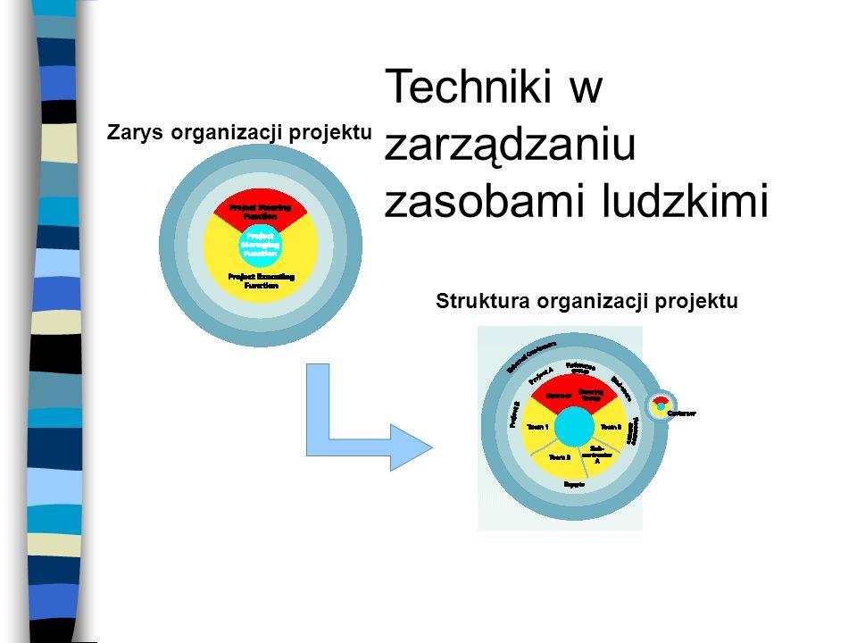 Zarys organizacji projektu Struktura organizacji projektu Techniki w zarządzaniu zasobami ludzkimi