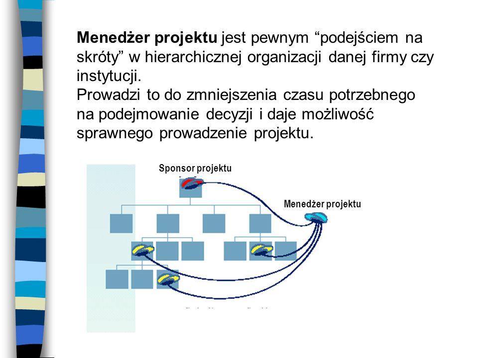 Menedżer projektu jest pewnym podejściem na skróty w hierarchicznej organizacji danej firmy czy instytucji. Prowadzi to do zmniejszenia czasu potrzebn
