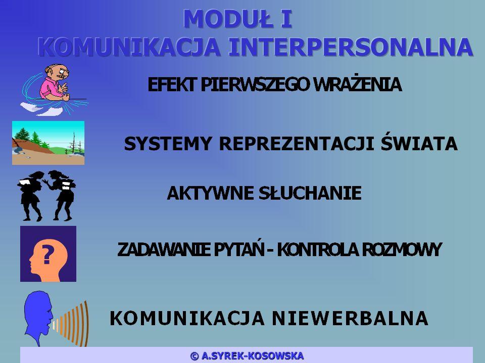 SYSTEMY REPREZENTACJI ŚWIATA © A.SYREK-KOSOWSKA