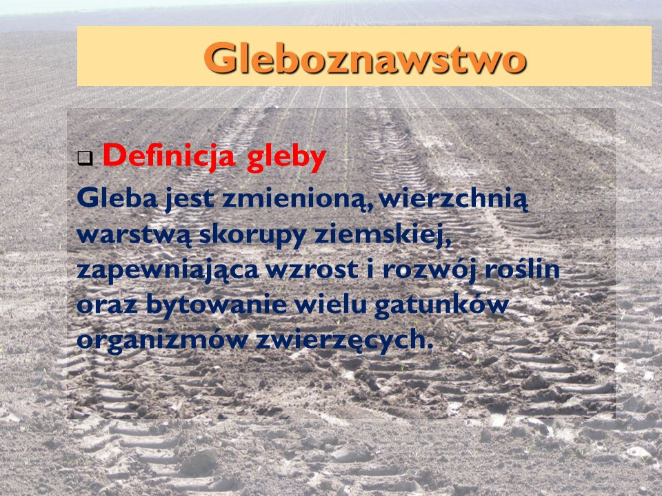 Definicja gleby Gleba jest zmienioną, wierzchnią warstwą skorupy ziemskiej, zapewniająca wzrost i rozwój roślin oraz bytowanie wielu gatunków organizm