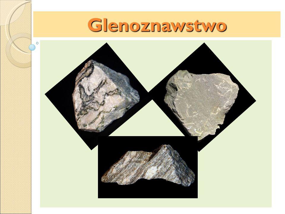 Czynniki glebotwórcze:Glenoznawstwo