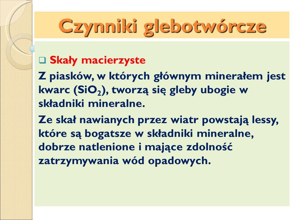 Skały macierzyste Z piasków, w których głównym minerałem jest kwarc (SiO 2 ), tworzą się gleby ubogie w składniki mineralne. Ze skał nawianych przez w