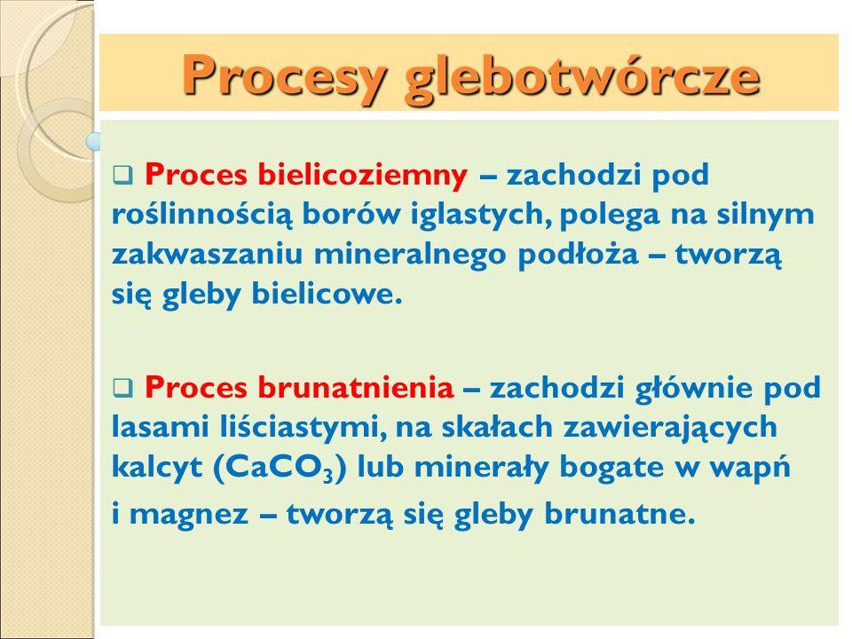 Procesy glebotwórcze Proces bielicoziemny – zachodzi pod roślinnością borów iglastych, polega na silnym zakwaszaniu mineralnego podłoża – tworzą się g