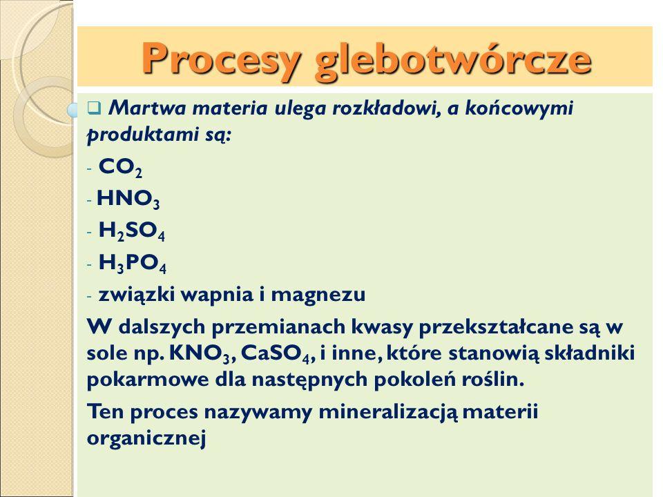 Procesy glebotwórcze Martwa materia ulega rozkładowi, a końcowymi produktami są: - CO 2 - HNO 3 - H 2 SO 4 - H 3 PO 4 - związki wapnia i magnezu W dal
