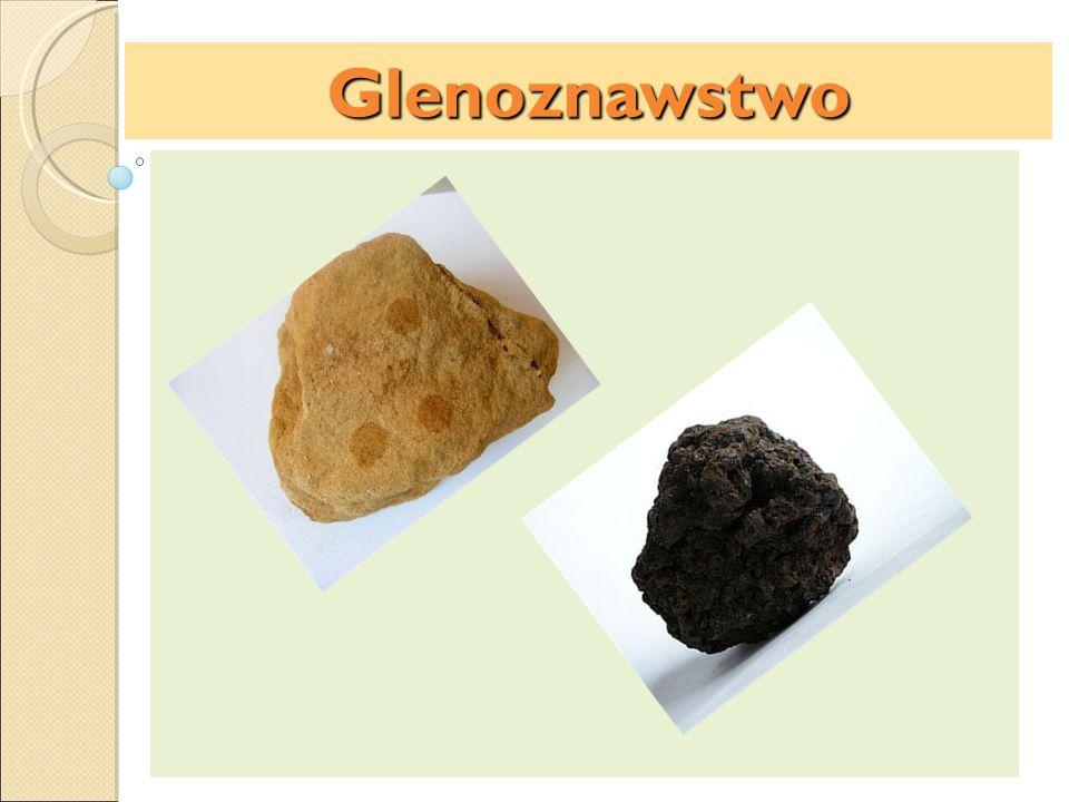 Glenoznawstwo