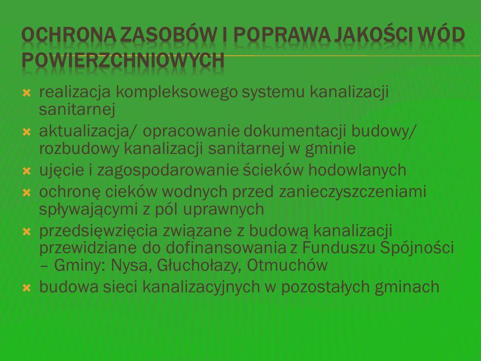 Na terenie gminy Nysa decyzje dotyczące zezwolenia na prowadzenie działalności w zakresie zbierania, transportu, usuwania lub unieszkodliwiania odpadów komunalnych posiadają następujące podmioty, które również faktycznie świadczą usługi komunalne: Przedsiębiorstwo Gospodarki Komunalnej EKOM, ul.