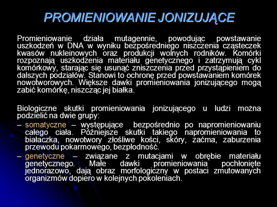 PROMIENIOWANIE JONIZUJĄCE Promieniowanie działa mutagennie, powodując powstawanie uszkodzeń w DNA w wyniku bezpośredniego niszczenia cząsteczek kwasów nukleinowych oraz produkcji wolnych rodników.