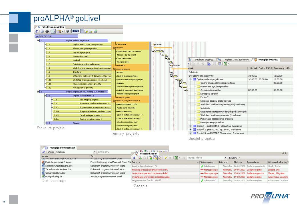 16 proALPHA ® goLive! Struktura projektu Terminy projektu Budżet projektu Dokumentacja Zadania