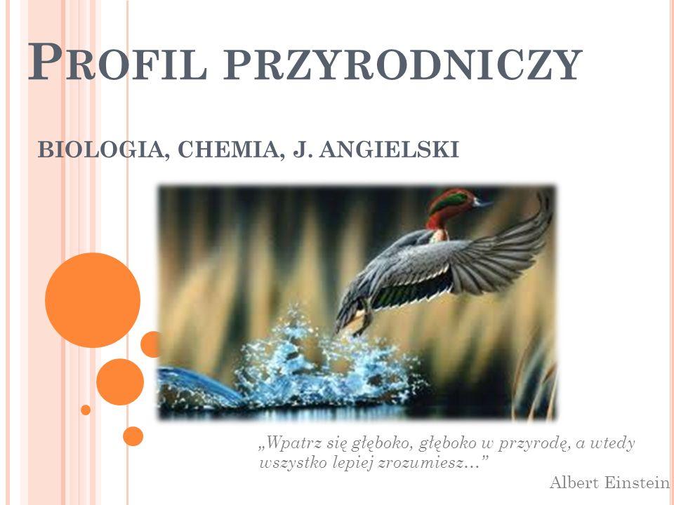 Profil przyrodniczy oferuje: nauczanie w zakresie rozszerzonym biologii, chemii, języka angielskiego oraz przedmioty uzupełniające – historia i społeczeństwo, ratownictwo medyczne.