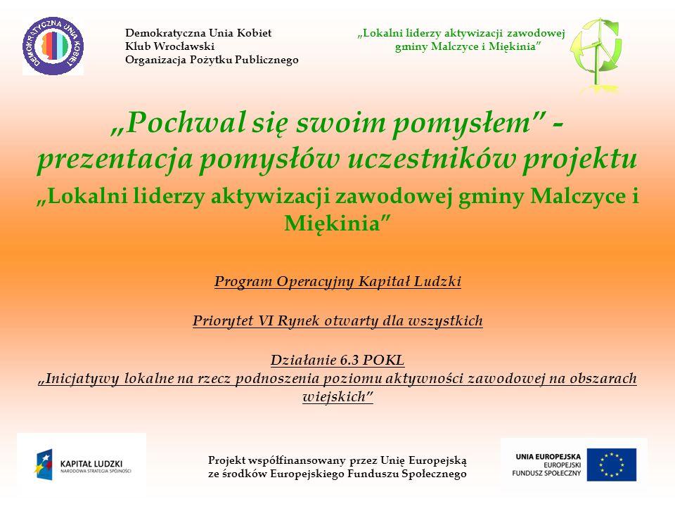 Pochwal się swoim pomysłem - prezentacja pomysłów uczestników projektu Lokalni liderzy aktywizacji zawodowej gminy Malczyce i Miękinia Program Operacy