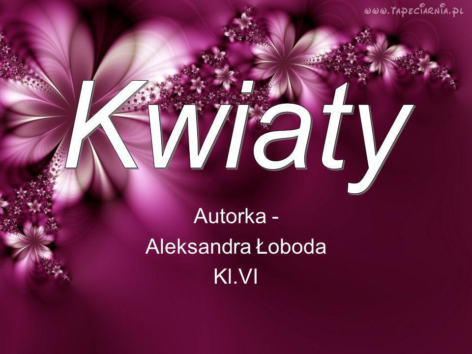 Autorka - Aleksandra Łoboda Kl.VI